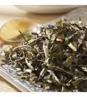 Thé blanc BIO Bai Mu Dan Bio