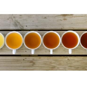 ANIMATION Les couleurs du thé 29/04