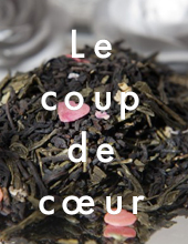 tisane purification